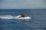 ekipa nurkowa wraca z  Great White Wall