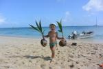Antoni zakłada plantację kokosów