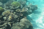 rafa przy plaży przy Namara