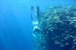 Mariusz penetruje Astrolabe Reef