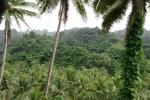 wnętrze Taveuni