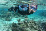 Adam na Astrolabe Reef