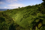 góry w Parku Narodowym Bouma