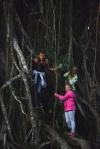 na awatarowym drzewie