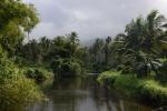 rzeka Bouma - widok w głąb lądu