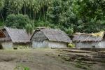 domostwa w wiosce w Banam Bay