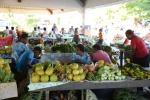owoce i warzywa z Santo