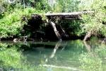 most and kanałem