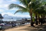 palmy przy głównej ulicy w Gizo
