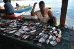 na targu rybnym w Gizo 15.09.2014 ZS
