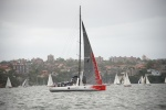ruch w Sydney Hobart