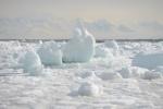 bariera lodowa przed Terra Nova 11.02.2015