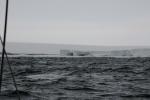 czyżby już Bay of Whales? 5.02.2015