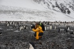Mariusz wśród pingwinów Adeli