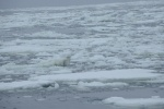 żegnamy lody Morza Rossa