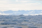 lód na tle lodowej Antarktydy