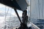 dopływamy do brzegów Wyspy Coulman