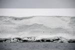 wyspa pokryta czpą lodu