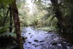 strumień łączący Crooked Arm z Dagg Sound
