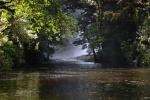prowadzi do niego odnoga w rzece