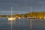 jachty przy Opua