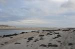 popołudniowy spacer po plaży