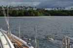 Hanuś i Agata płyną na snorkla na rafce przy brzegu ZS