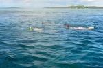 ekipa w wodzie w przesmyku