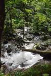 widok z podnóża wodospadu w dół rzeki