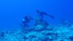 spotkanie pod wodą