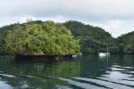 charakterystyczne dla Palau wysepki PK