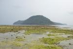 Wyspa Run widziana z Neilaka