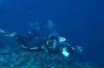 unicornfish robi sobie jacuzzi z Hani bąbelków