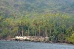 palmy u podnóży wulkanu na Palau Gunungapi