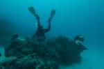 Hanuś fotografuje Leaf scorpionfish na Sand Bar