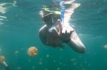 Kaśka dzielnie pływa w Jellyfish Lake