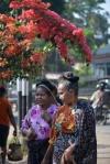 kobiety wracające z targu