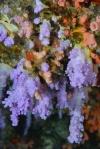 koralowe ozdoby 2