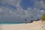 asza kapitan na Bird Island